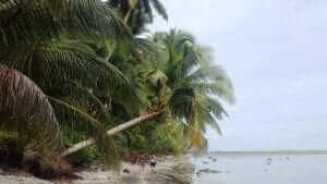 beach in Nias island