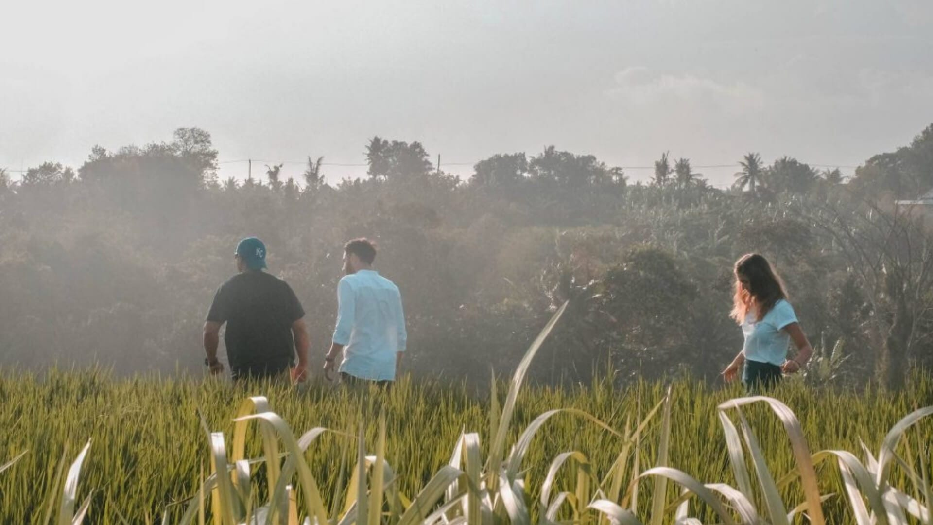 Three students are walking in a ricefield in Indonesia.