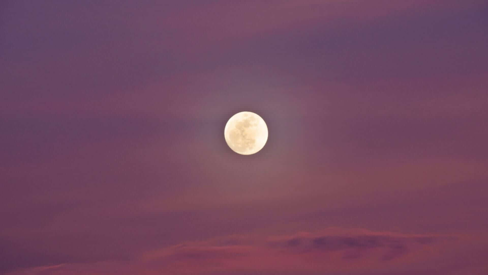 The moon is shining and the sky is purple in South Korea.