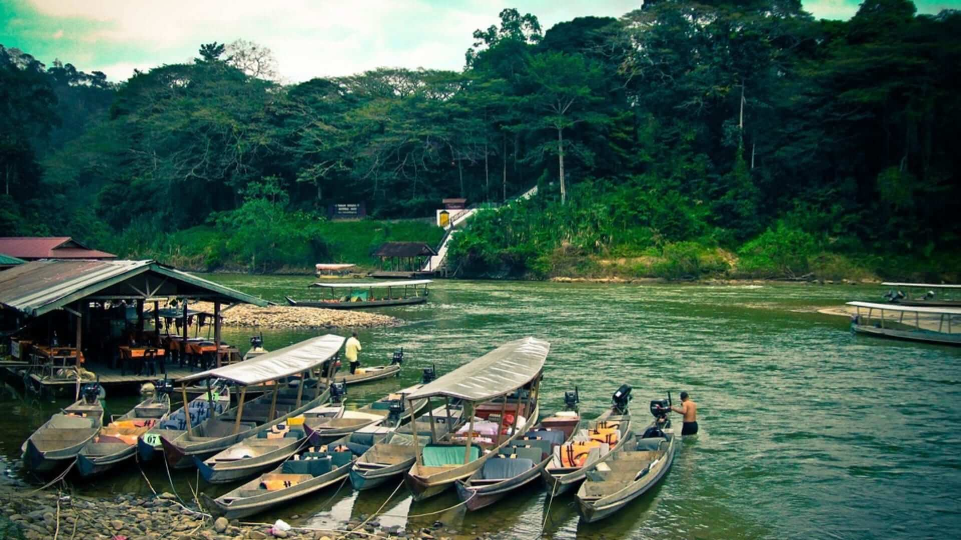 Boats are laying in a river in a jungle in Malaysia.