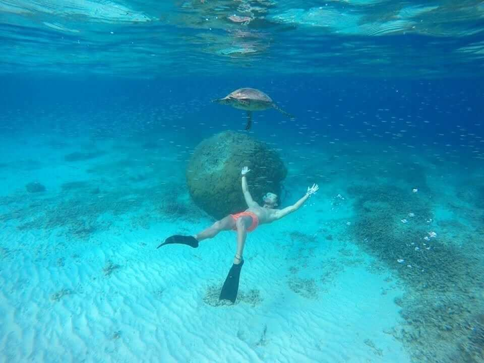 a guy diving below the turtle