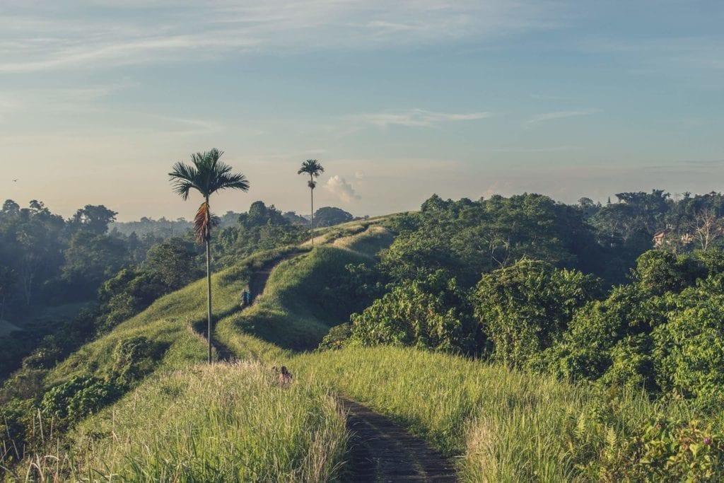 campuhan ridgewalk, Ubud, Bali, Indonesia