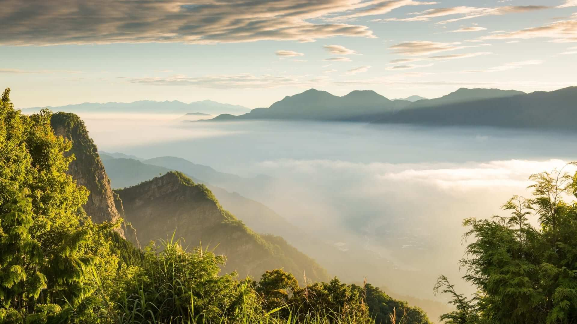 Aerial view from mountains that protrude above mist in Taiwan.