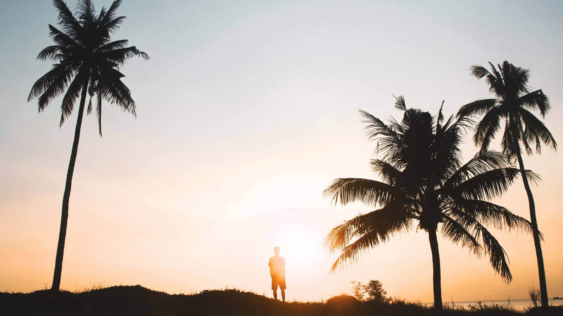 A man is standing on top of a small hill during sunset in Canggu watching the ocean