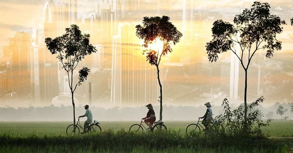 3 locals riding their bikes in the rice fields