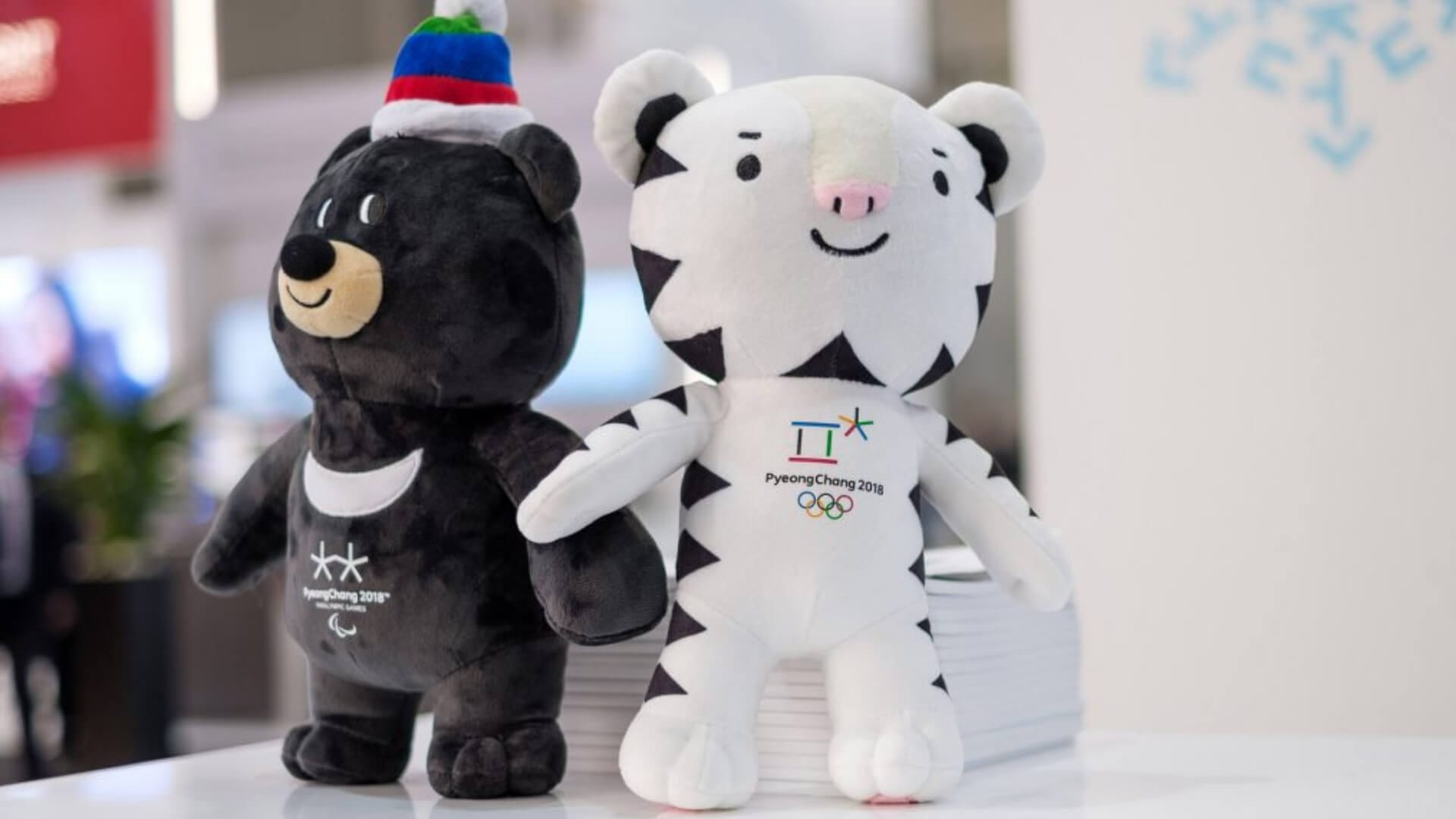 A black and a white bear are standing on a table in korea.