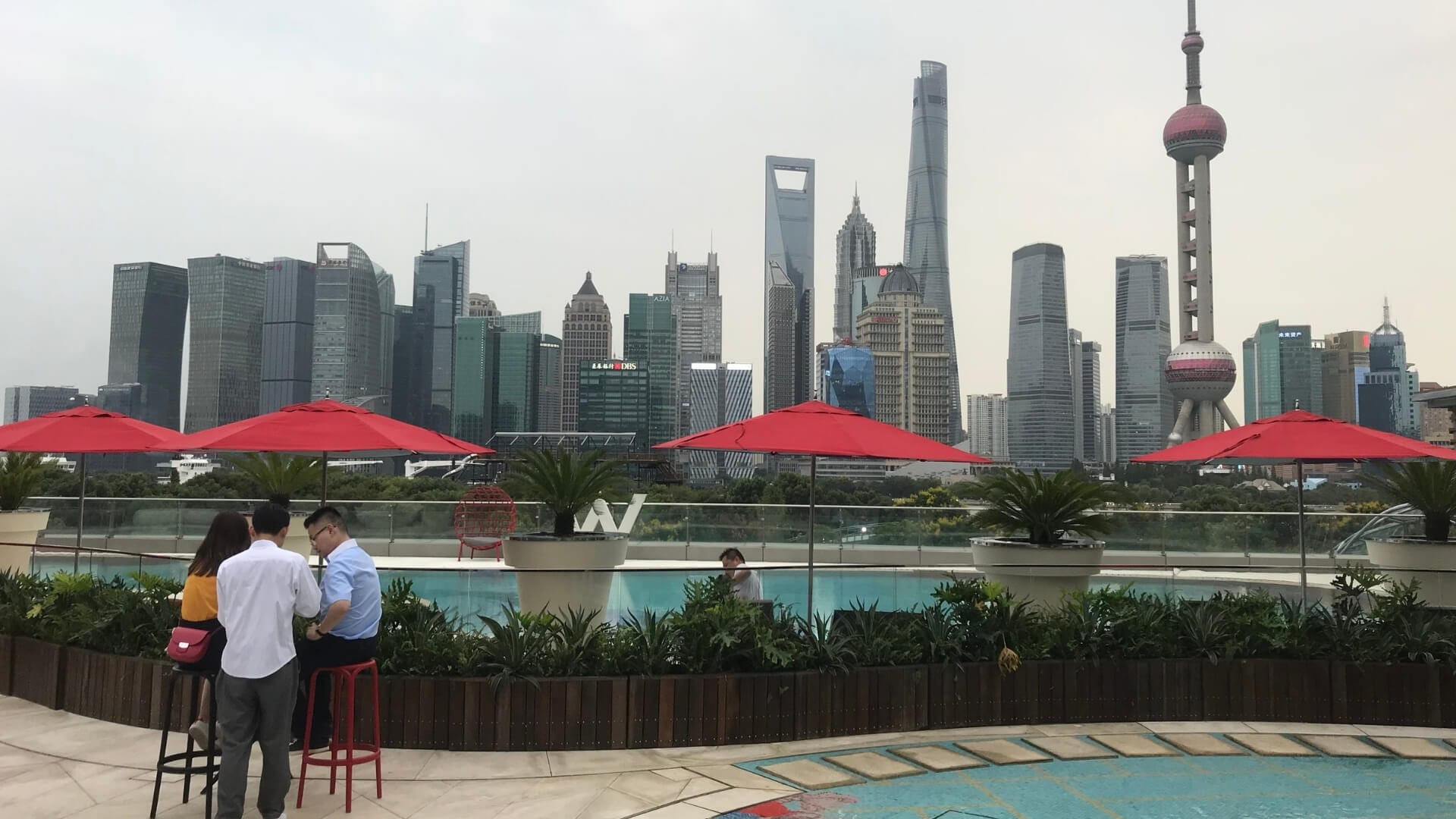 People are having a drink at a rooftop bar with a pool and a view of the skyline of Shanghai.