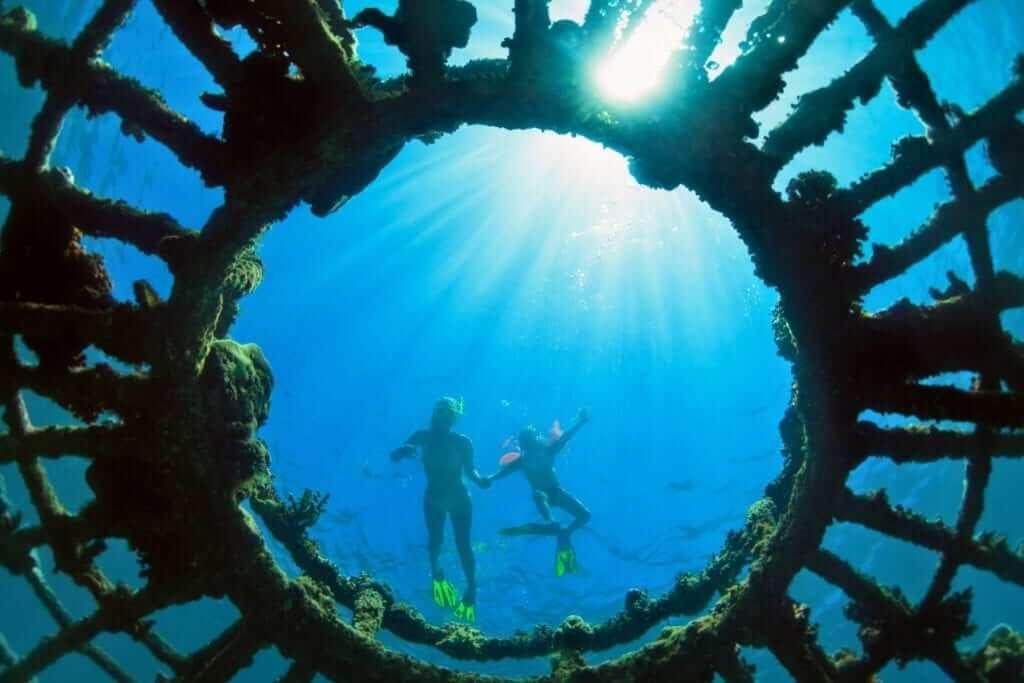 Indonesia - dive - ocean