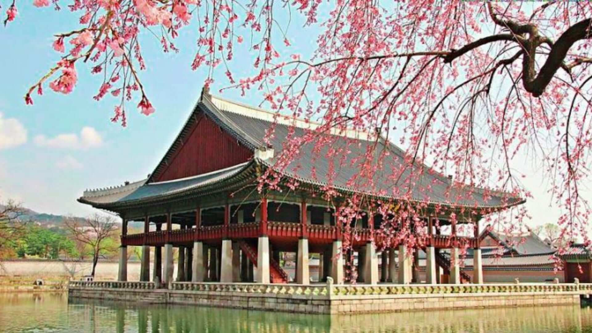 A red palace on water with trees with pink blossom in South-Korea.