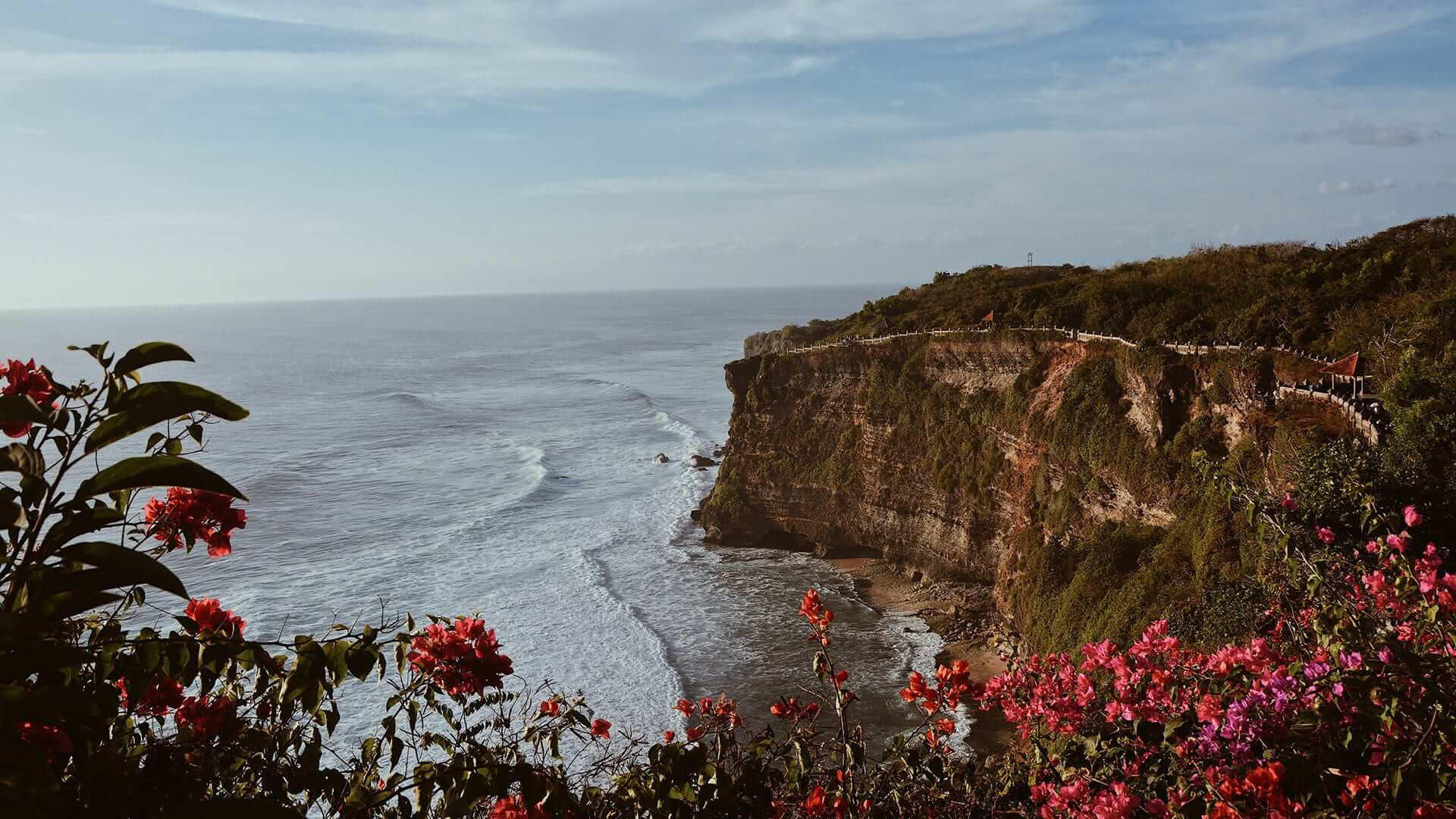 High cliffs above the ocean at dusk. Flowers in front