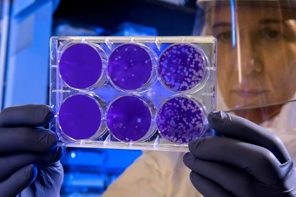 corona virus lab scientist