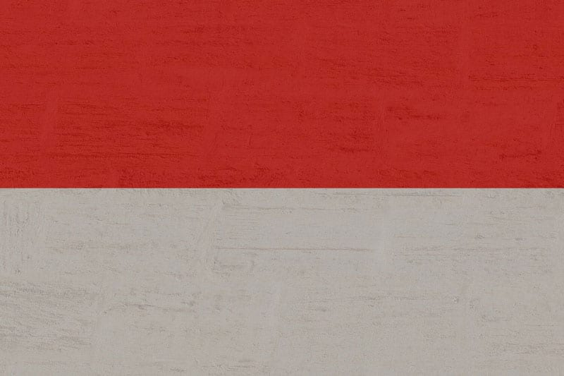 The Indonesian Flag: a red stripe on top and a white on the bottom