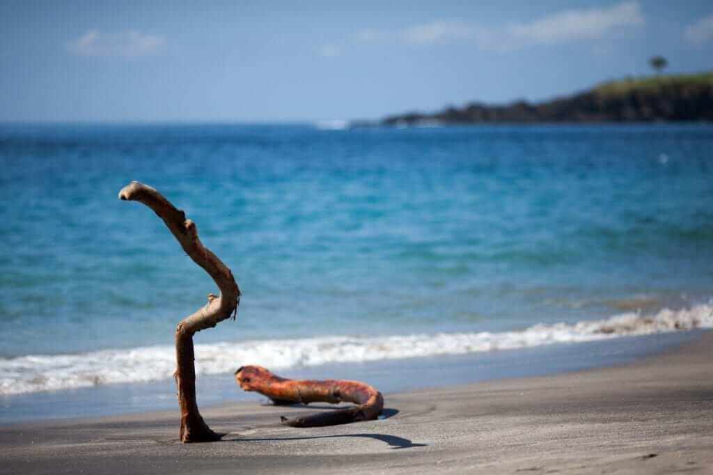 beaches are everywhere in bali