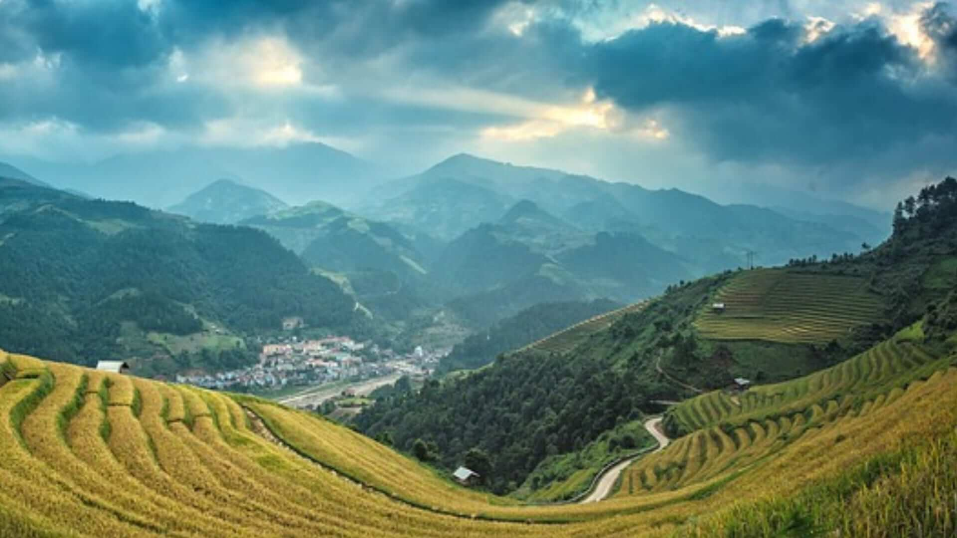 Green ricefields and mountains are surrounding a small farmer's village in China.