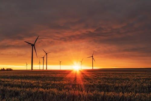 a big field with wind turbines