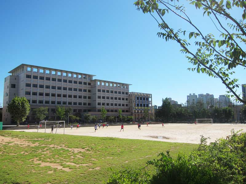 Soccer field at Hankuk University