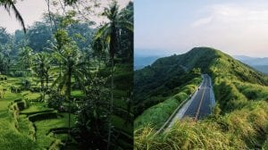 A collage picture of the natures of Indonesia and Taiwan.
