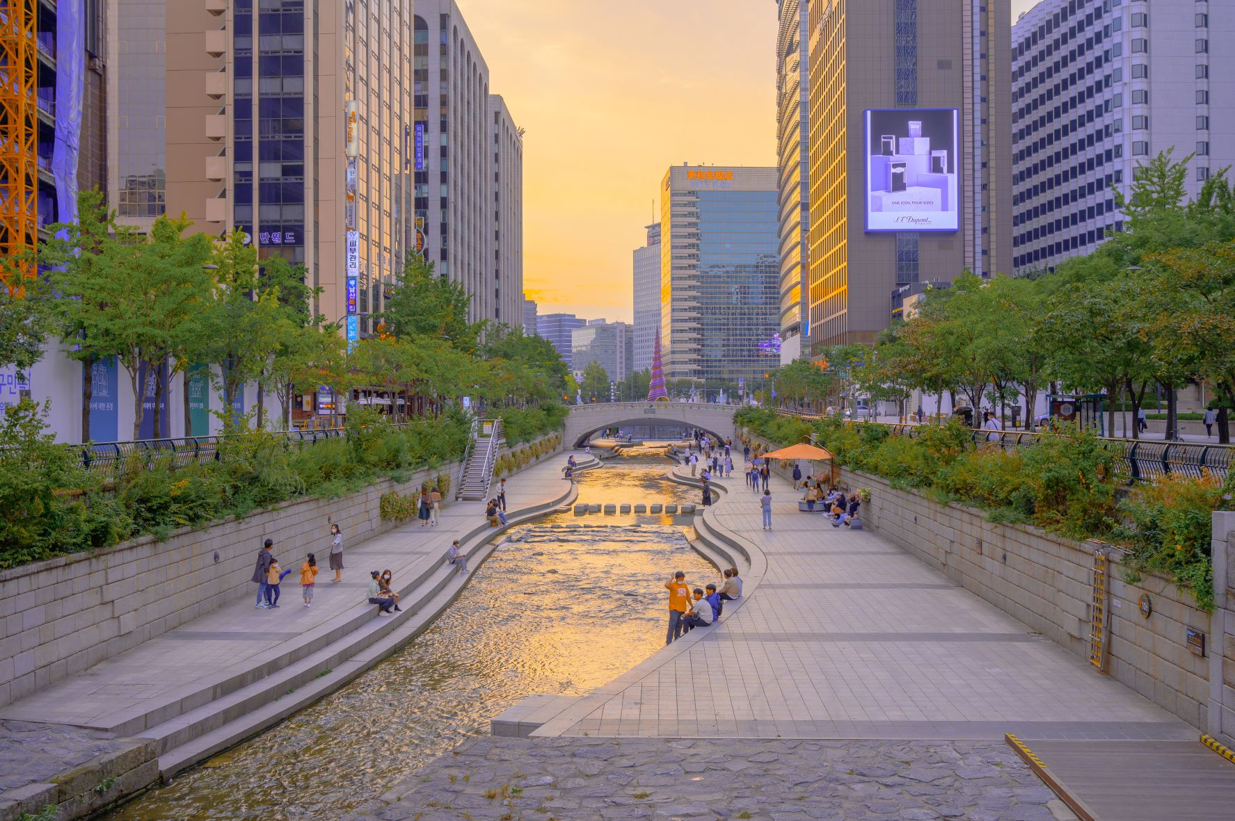 Read more about the article Why and how I will study in South Korea – Insights of a student